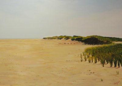 Monomoy Dunes